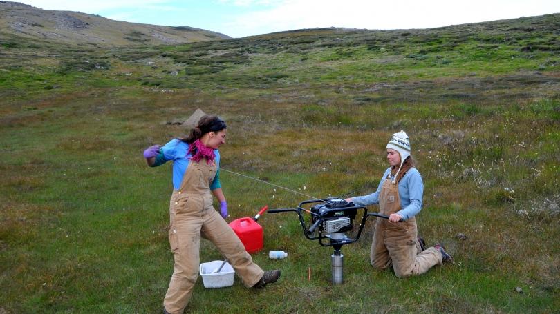 women working in greenland