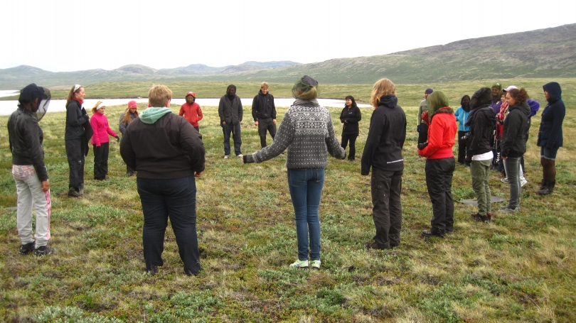 carbon cycle dance in greenland