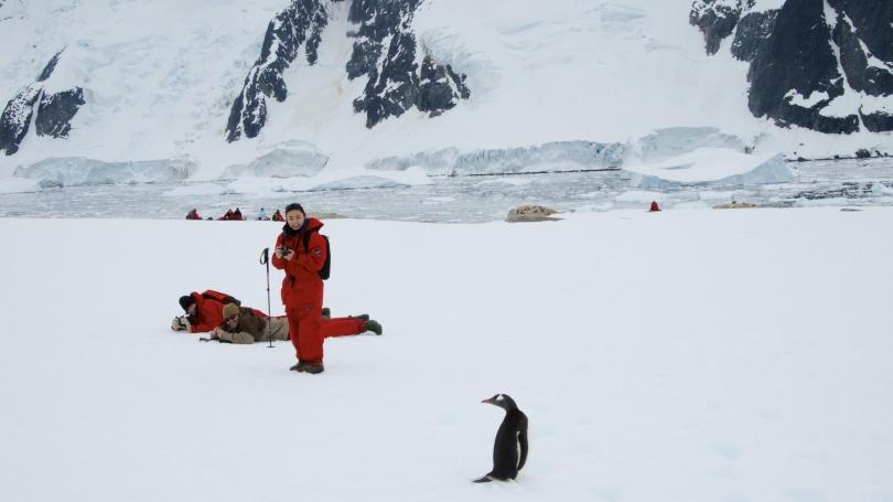 Diana Wise Antarctica